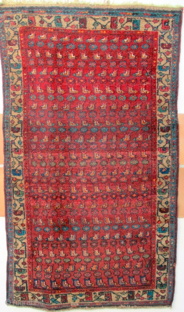 OLD RUG FROM MEHRABAN IN THE HAMADAN REGION which is very tightly woven on fine cotton warps. The weave pattern is virtually identical to a rug featured in the excellent text book  ...