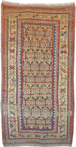 """Gutschan Kurd Persian circa 1910 antique. Collector's item, Size: 190 x 98 (cm) 6' 3"""" x 3' 3""""  carpet ID: E-341 Vegetable dyes, the black color is oxidized, the knots are hand  ..."""