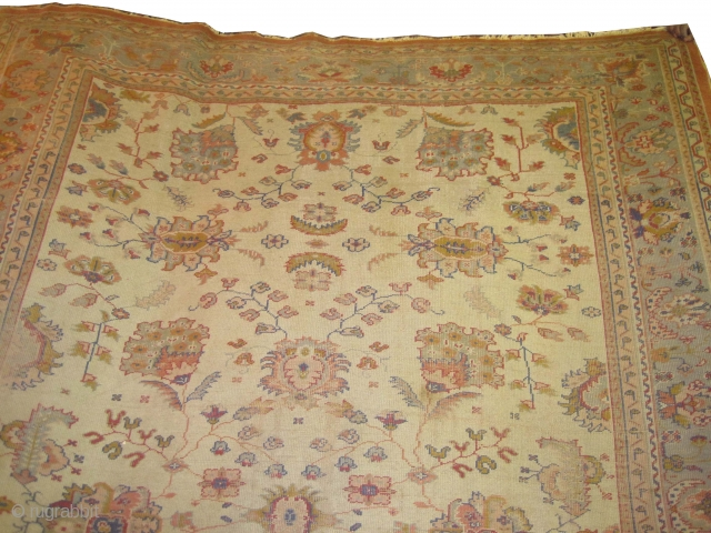 """Ushak Anatolian circa 1905 antique. Size: 337 x 248 (cm) 11' 1"""" x 8' 2""""  carpet ID: P-6006 The background color is ivory, the surrounded large border is pistachio green, certain places  ..."""