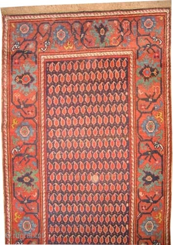 """Malaier Persian circa 1900, antique, Size: 312 x 105 (cm) 10' 3"""" x 3' 5""""  carpet ID: K-2817  vegetable dyes, the black color is oxidized, the knots are hand spun wool,  ..."""