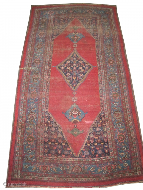"""Bidjar Halvai Persian circa 1870 antique. Collector's item. Size: 360 x 186 (cm) 11' 10"""" x 6' 1""""  carpet ID: P-4619  Vegetable dyes, the black color is oxidized, the warp and  ..."""