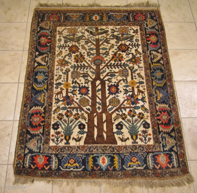 Antique Neiriz tree of life rug from Southpersia. Such a finely drawn design is very unusual for a tribal rug. Size: 156x123cm / 5'2''ft x 4'1''ft, very good condition, age: circa 1900.  ...