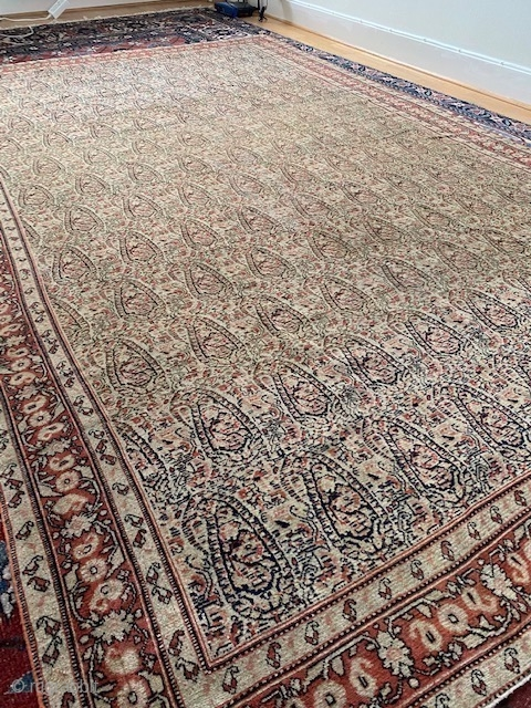 Very finely knotted Senneh from late 19th century in good condition. Its very thin almost like a blanket. Size: ca 255 x 155 cm