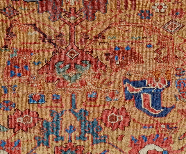 Extremely rare 18th c. Classical SaujBulagh Kurdish rug fragment (detail). Camel ground. There are only a few of these extant and this is one of the oldest based on the drawing details.