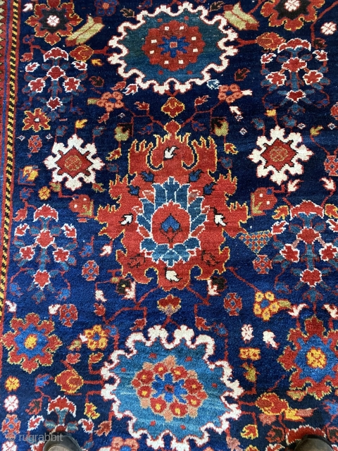 """Kurdish Sauj Bulaq carpet featuring a beautiful Harshang design, 2nd half 19th C., 12' x 5'2"""", in excellent condition. Minor losses to ends. Full pile with small areas of light wear.   ..."""