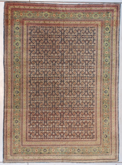 """This circa 1890 antique Fereghan Sarouk #7631 Oriental Carpet measures 5'9' X 8'0"""" (179 x 243 cm). It has a beautifully drawn Herati motif in pale blue and rust on a dark  ..."""