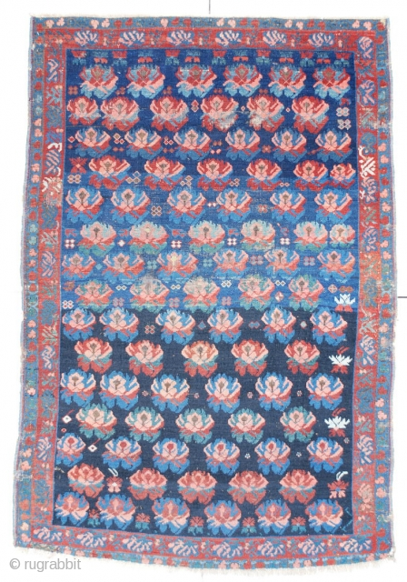 """#6421 Seyhore Kuba Antique Caucasian Rug 3'10"""" X 5'8″ This circa 1870 Seyhore Kuba measures 3'10"""" X 5'8"""". It has a lovely repeated design of carnations in pink, green, red and blue on  ..."""