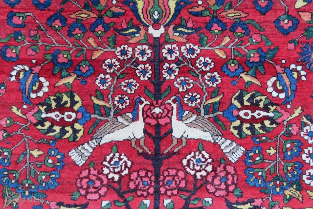 Bahtiar Feridan all ower design wonderful colors and excellent condition all original all most square size 4,00x3,50 cm Circa 1880-1890