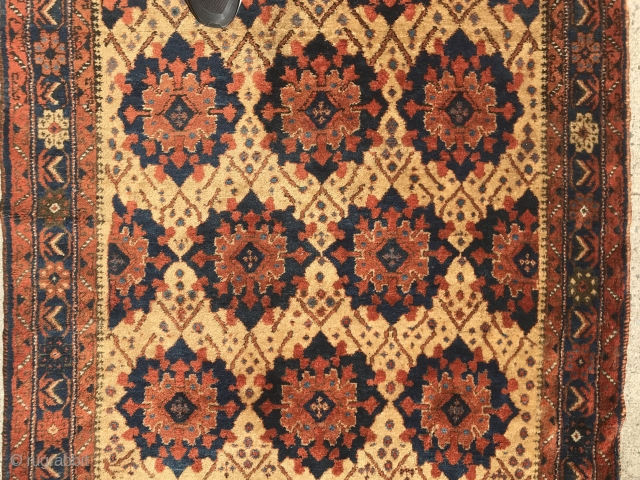 Afshar 4x6 on a soft camel ground. Turkic influenced. Great condition.