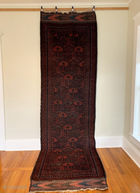 Antique Baluch Chakhansur Long Rug. Late 19th Century. Afghanistan. Rows of madder and undyed dark brown wool 'ashik' tree devices radiate a diagonal pattern. Dragon type totems are entwined. Excellent condition considering  ...