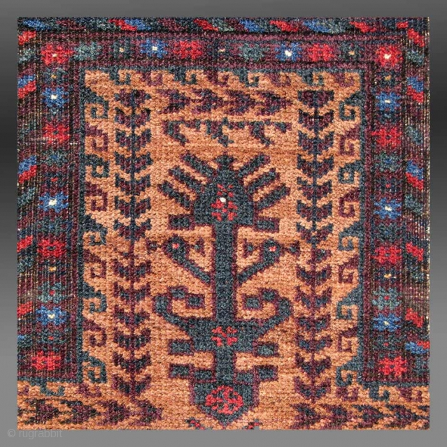 """Baluch Prayer Rug, NE Persia (Khorassan), late 19th Century, 3' x 5' 9""""  For further images as well as a complete description of this rug, please go to the following link  http://www.tcoletribalrugs.com/resources/11-24-11%20copy/Baluch%20Prayer%20Rug.html"""