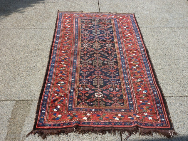 """9'6"""" x 5'3""""  spots of wear and generally low pile but a charming rug."""