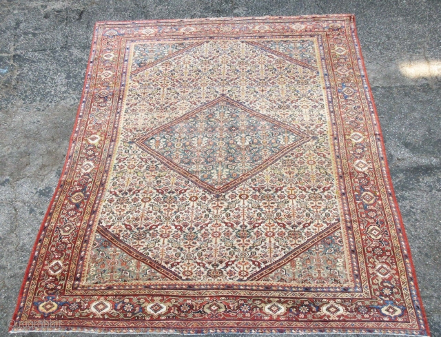 "Great ivory ground Mahal rug in full pile and great condition, size is 10'-3""x8'-9""."