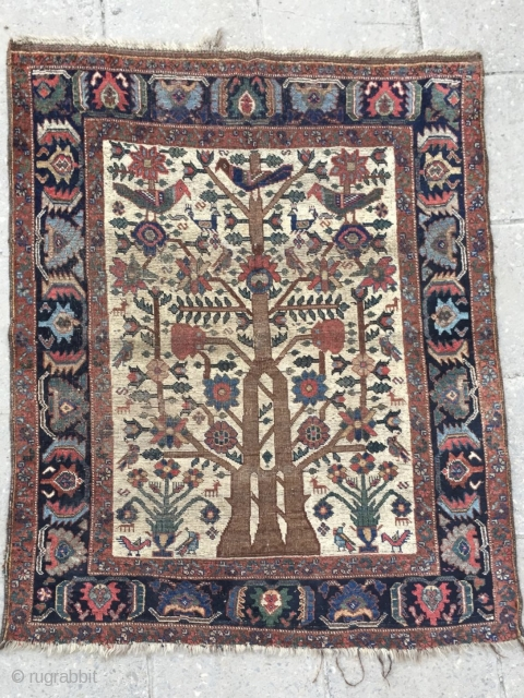 Tree of life carpet size 170x130cm