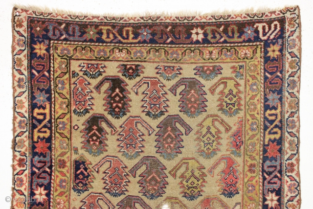 """Antique northwest persian long rug. Nice border. """"as found"""", with great natural colors. High quality. Very diry. Single wefted. Good age, ca. 1875 or earlier. 3'8"""" x 8'9"""""""