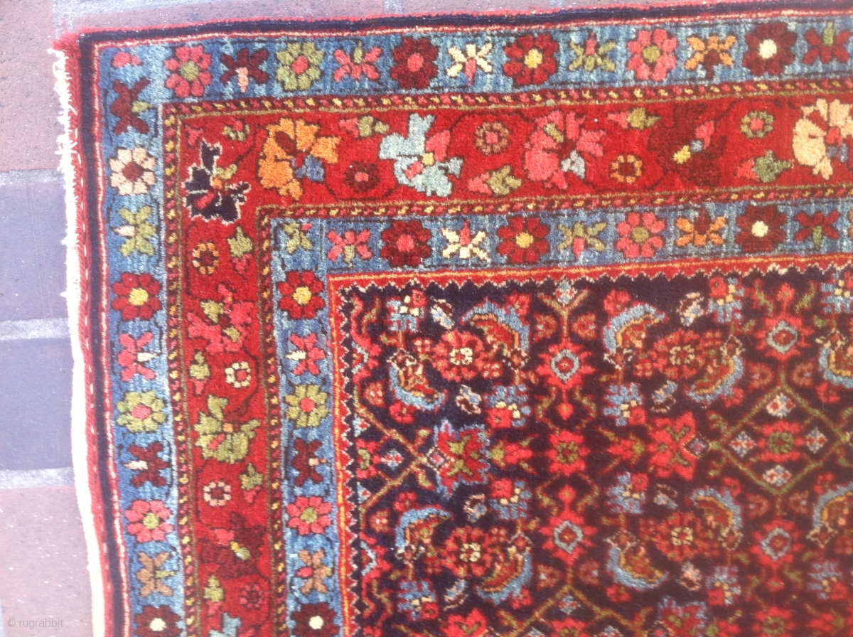 Herati Rug Home Decor
