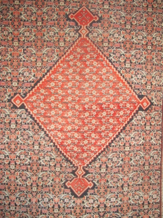 "Here is a fine Senneh Rug, 2.00m x 1.28m (6'7"" x 4'2""). Velvety even pile, beautiful dyes, and an absolutely mesmerising medallion. Available."