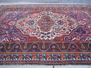 "very decorative and beautiful persian bakhtiari rug measuring 5' 5"" x 8' 5"" loose selvage even pile nice condition price is 750.00 plus shipping