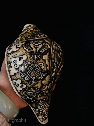"""Tibetan carvid conch """" green tara"""", also named as right-handed conch, the Tibetan language as """" Donga ye qi"""". It is the instrument played by Tibetan buddhist monks when they are engaged  ..."""