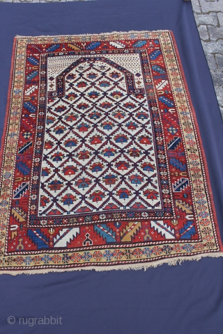 Schirwan Antique 19th century Wool on Wool with natural colors very good and almost intact condition. Size: 149x198cm