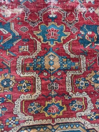 so-called 'Golden Triangle' group carpet. Woven arguably in either Northwest Persia or Eastern Anatolia at a time when the border between these two areas was more fluid, circa 1700?  size=192x264cm Sourced in Tibet  ...