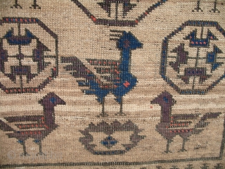 A Dated, Inscribed Bird Baluch. Probably only one on record.
