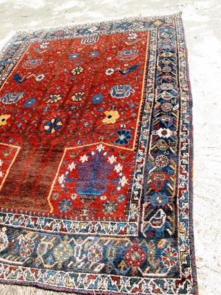 1900 Persian Tree / Prayer rug