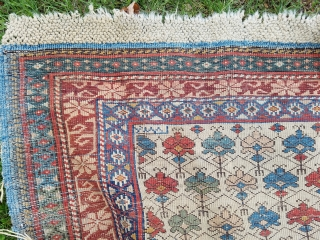Kuba - wonderful ivory ground with diagonal rows of nicely executed polychrome carnations, about 2.5' x 4.5', secondary border and guard stripe missing lower end, good even pile.