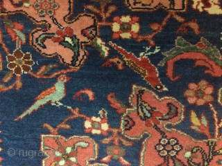 "Antique Tafresh Persian rug, circa 1920s.  Beautiful salmon field, and playful birds.  With soft wool, and in lovely condition except for one bite in top right corner.  4'6"" by  ..."