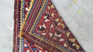 Zagatala rug , over 120 years old , high pile,excellent colors and star design . (for real intenders & collecters; it must be an archaic and impresive  piece to study on  ...