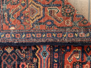 Early 1900's Persian Senneh, with amazing natural colors and classic pattern. 194cm x 138cm. No repairs.