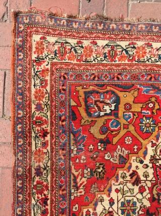 Qashqai Kashkuli rug fine woven size : 340 x 180 cm