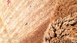 Size :151x170 (cm) ,