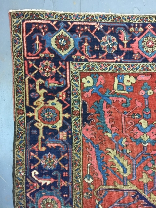 Antique Handmade Persian Heris Serapi Rug,all in natural,some old repairs,Clean,Attractive Design,Low pile,More than 100 years Old,Size:303cm by 235cm