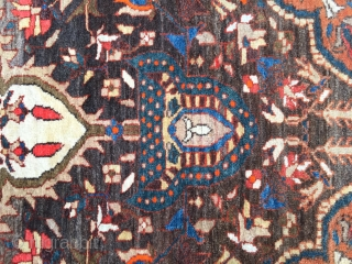 Farahan/sarough