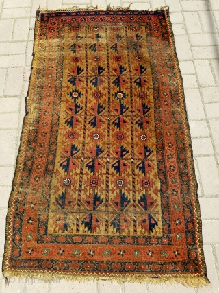 """Camel ground Baluch rug with good colors and design,as found without any repair or work done. Size 5'2*2'11"""".E.mail for more info and pics."""
