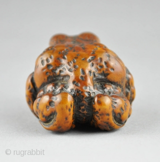 Japanese wood netsuke depicting a large toad.