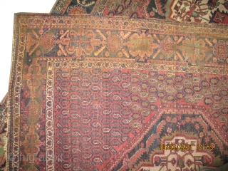 "Afshar Persian, old, 170 x 143 (cm) 5' 7"" x 4' 8""  carpet ID: K-5581