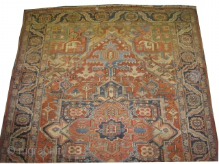 """Serapi Heriz Persian knotted circa in 1902, antique, collectors item, 338 x 238 (cm) 11' 1"""" x 7' 10""""  carpet ID: P-2194 The brown color is oxidized, the knots are hand  ..."""