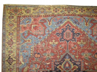 Serapi-Heriz Persian knotted circa in 1905 antique, 325 x 231 cm  carpet ID: P-5651 The black knots are oxidized, the knots are hand spun wool, the selvages are woven on two lines  ...