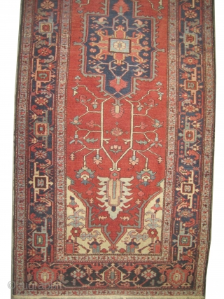 "Serapi Heriz Persian circa 1895 antique. Spectacular rare example, Size: 336 x 138 (cm) 11'  x 4' 6""  carpet ID: P-5780