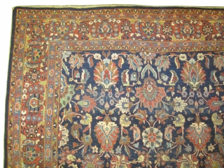 """Mahal Persian, knotted circa in 1920 antique,  365 x 265 (cm) 12'  x 8' 8""""  carpet ID: P-5829 The black knots are oxidized, the knots are hand spun wool, all  ..."""
