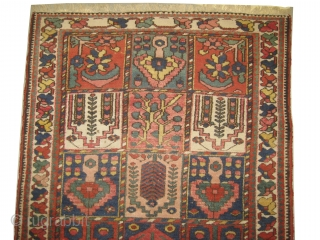 "Baktiar Persian circa 1915 antique, collector's item, Size: 210 x 134 (cm) 6' 11"" x 4' 5""  carpet ID: BRD-8
