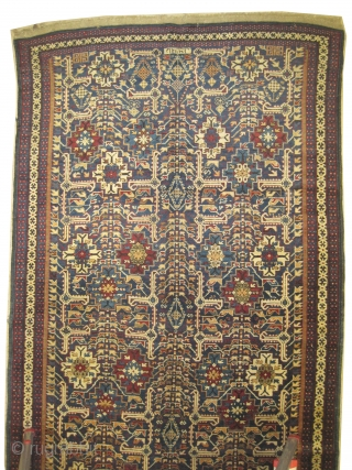"Kuba Caucasian dated 1321 = 1903 antique. Collector's item. Size: 260 x 132 (cm) 8' 6"" x 4' 4""  carpet ID: V-21