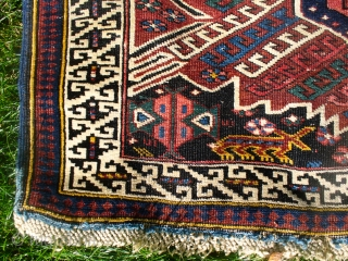 "Seichour Kuba! Excellent colors and condition. 72"" X 45"".  Probably pre-1900, judging from the dyes. The dark blue/black is somewhat corrosive in one corner leading to minor pile loss. Ends and  ..."