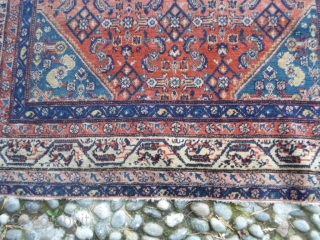 193x125 cm. Antique very fine knot Serabend in very good condition. All natural dyes and shiny wool for this Hamadan distric carpet. More info, price and photos on request. GREETINGS   from  COMO  ...