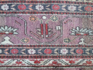 Oasi of KASHGAR XINJIANG region of East-Turkestan.