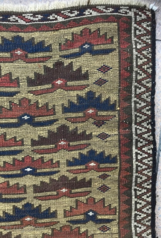 Beautiful and early Baluch rug,  Rare yellow field and white border in condition .