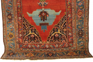 Spectacular Bijar Kelleye carpet from Northwest Persia circa 1870, with measurement of 6-5 x 12-7