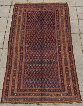 Antique Kurdish Kolyai rug from West-Persia, Hamadan region. Late 19th century. Wool foundation. Good condition with full pile. Size : ca 230cm x 130 cm (7'6''ft x 4'3''ft)